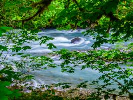 River 2 #109372