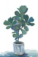 Potted Plant #112352