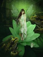 Fairy 46 #11781