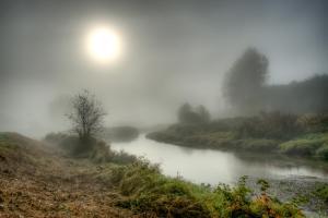 Foggy River #11806