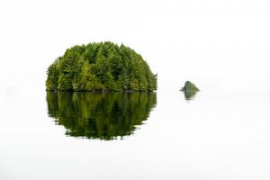 Green Island #11807