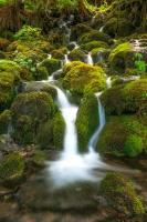 Waterfall I #11825