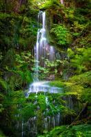 Waterfall II #11826
