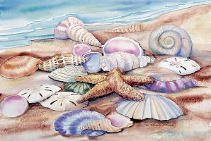 Seashells I #12695