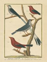 Bird Drawing III #15814