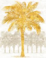 Palm Coast II Crop #20882
