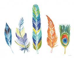 Rainbow Feathers III #37647