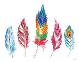 Rainbow Feathers IV #37648