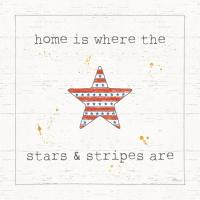USA Cuties IV Shiplap #38808