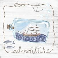 Ship in a Bottle Adventure Shiplap #38809