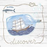 Ship in a Bottle Discover Shiplap #38811