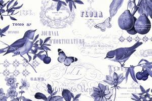 Botanical Blue I #42172