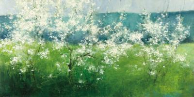 Mountain Spring #45450