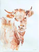 Village Cow #45774