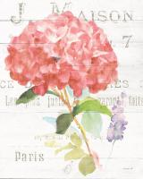 Maison des Fleurs VI #45836