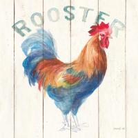Rooster #46168