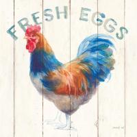 Fresh Eggs Hen #46169