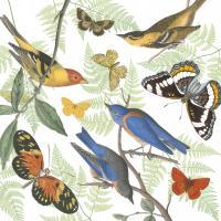 Natures Flight I #48422