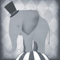 Circus Elephant Gray #49896