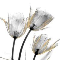 Gold Embellished Tulips 2 #52927