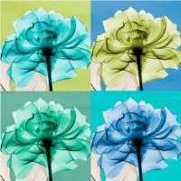 blue Green Flowers 1 #52949