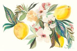 Citrus Summer I #58102