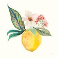 Citrus Summer IV #58105