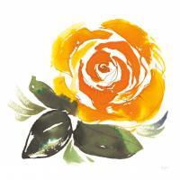 Bold Roses II #58112