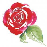 Bold Roses III #58113