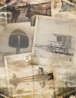 Los Angeles Polaroid Collage A #91181
