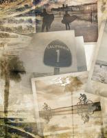 Los Angeles Polaroid C #91483