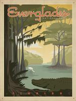 VINTAGE FLORIDA EVERGLADES ALIGATOR USA #JOEAND 116278