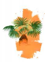 Palm 2 #100825