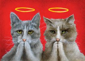 Holy Cats #72070