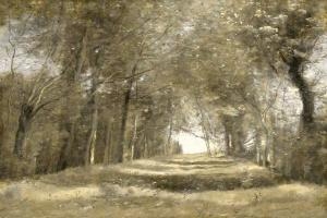 Shaded Path II #CE115060