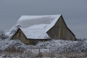 Winter Barn #CRO-1381