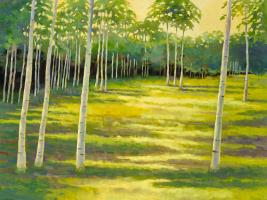 Sunlit Meadow #92939