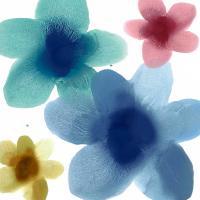 Floral Joy I #HC114207