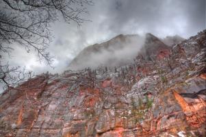 Canyon Wall, Zion #91595