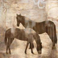 Equine I #JM6869