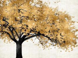 Golden Blossoms #KTB111457