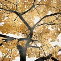 Golden Leaves #KTB111459