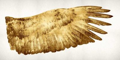 Golden Wing II #KTB111511