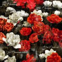 Je Taime Roses #KTB112070