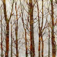 Through The Trees II #KWB111790