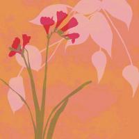 In Bloom I #86954