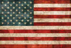 Allegiance #LW6911