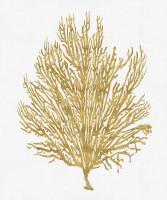 Sea Life - Gold on White V #MEL112659