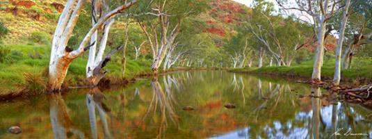 Ellery Creek, NT #MLKD015