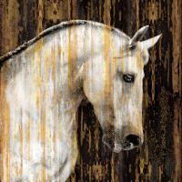 Horse II #MRR7378
